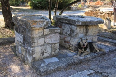 """""""Monument of the Eponymous Heroes"""" once bore statues of mythical heroes of the Athenian tribes, and dog (apparently not a stray)"""